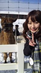 西田麻衣と枡田絵理奈 付き合うならどっちがいい?YouTube動画>3本 ニコニコ動画>1本 ->画像>532枚